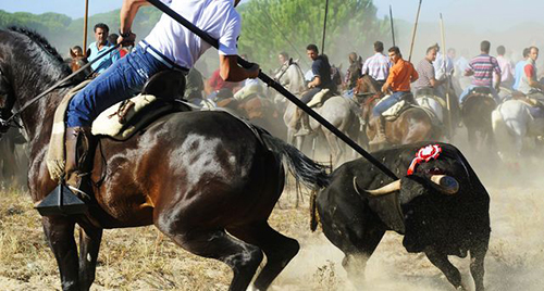 Toro-Vega-Tordesillas-Valladolid