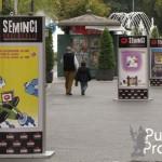 Semana Internacional de Cine de Valladolid, SEMINCI 2012