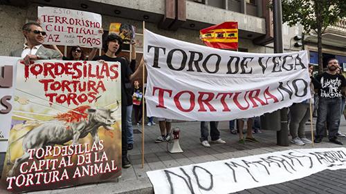 protesta en contra toro de la vega