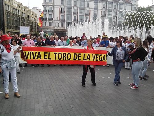 torovega-protesta pro